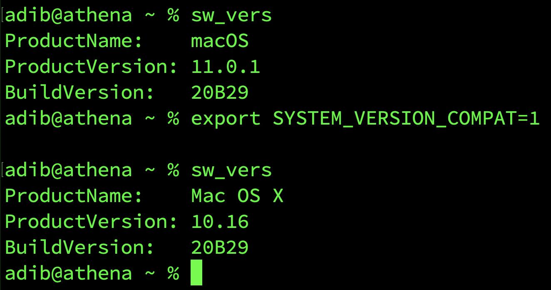 Big Sur version number compatibility environment variable